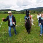 Die Außenwohngruppe der Lebenshilfe Idar-Oberstein zu Gast bei den Hunsrück-Lamas !