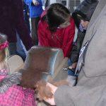 So wird Wolle kadiert, auch die jüngsten Besucher helfen mit!
