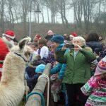 Der Nikolaus ist bei den Kindern sehr beliebt