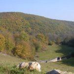 Eine Herbstwanderung