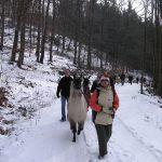 lamatrekking-lamawandern-56